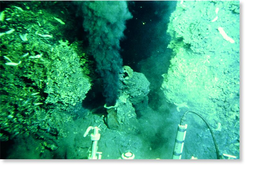 organisms that use chemosynthesis Chemosynthesis, as opposed to photosynthesis, does not require sunlight and can take place under extreme conditions in the hot vents under water habitats for chemosynthetic bacteria are usually found in the ocean depths, where a mineral soup is leaking out of the seafloor via thermal vents.