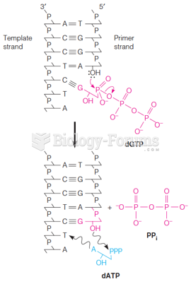 The DNA polymerase reaction