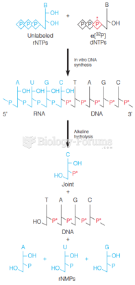 The transfer experiment that demonstrated the existence of RNA primers in DNA replication