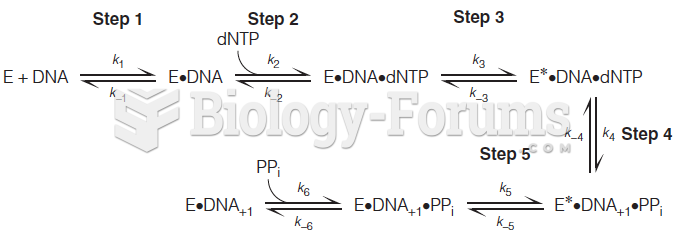 A complete kinetic scheme for a single nucleotide addition