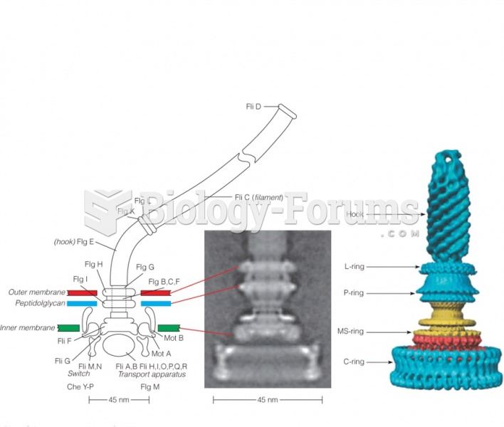 Structure of the bacterial flagellar motor from Salmonella enterica