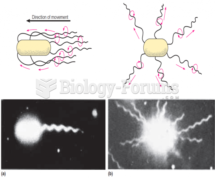 Effect of the direction of flagellar rotation