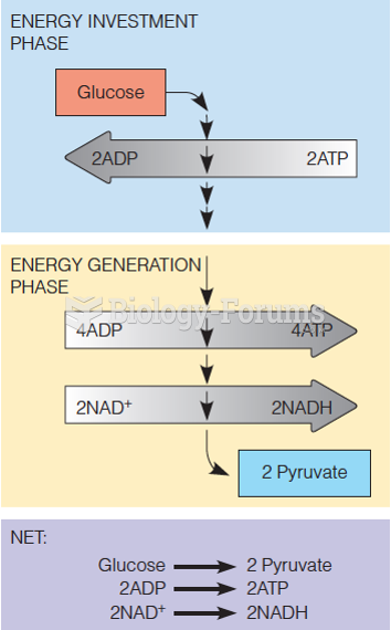 The two phases of glycolysis and the products of glycolysis