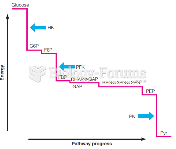 Energy profile of anaerobic glycolysis