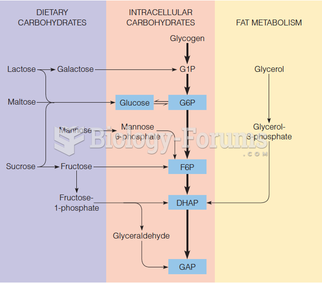 Routes for utilizing substrates other than glucose in glycolysis