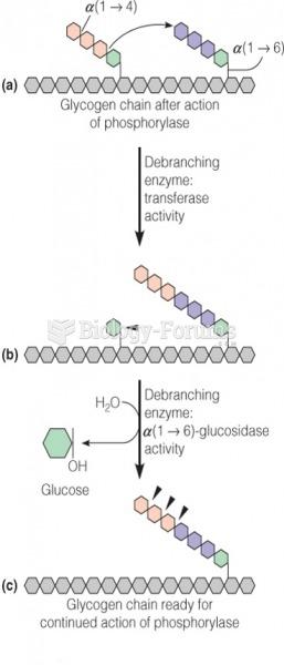 The debranching process in glycogen catabolism
