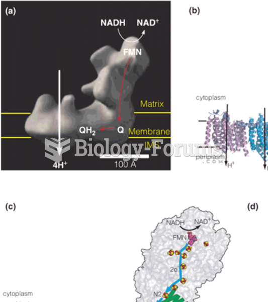 Structure and function of complex I (NADH–coenzyme Q reductase)