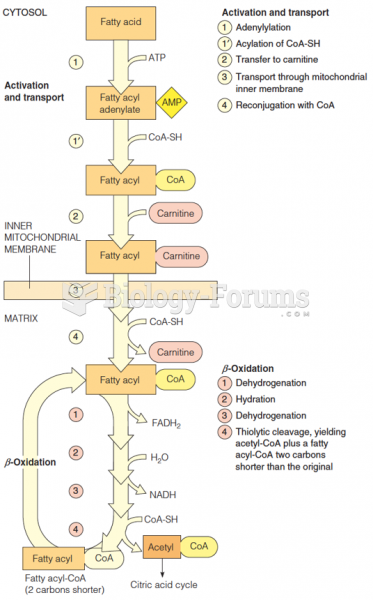 Overview of the fatty acid oxidation pathway