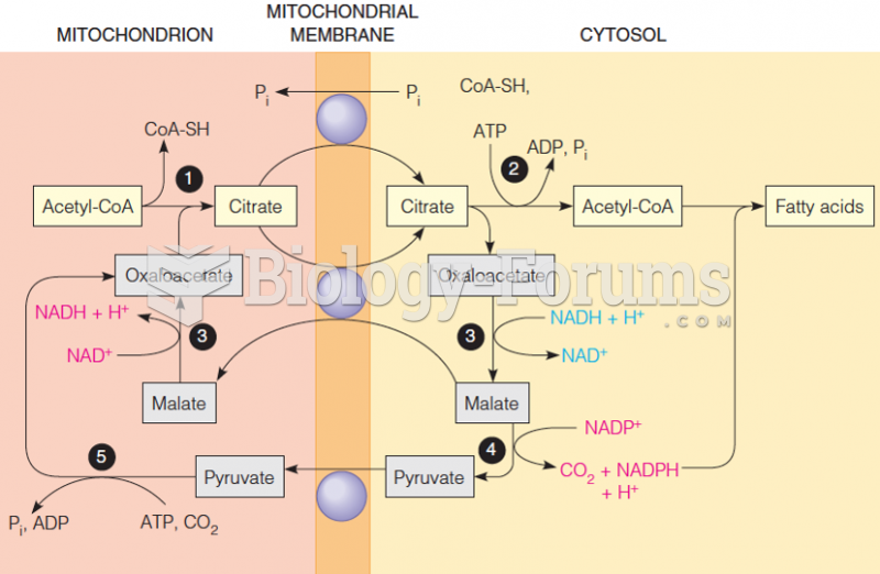 Transport of acetyl units and reducing equivalents used in fatty acid synthesis