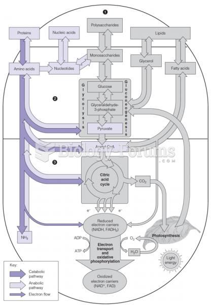 Pathways of nitrogen metabolism (purple) in the general pattern of intermediary metabolism