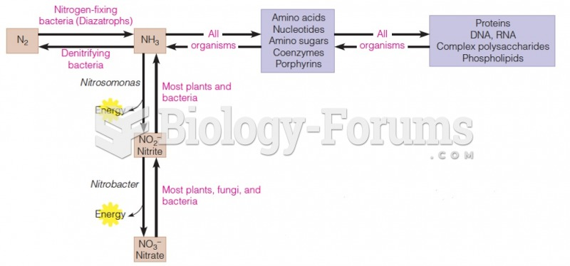 Relationship between inorganic and organic nitrogen metabolism
