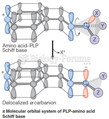 Pi molecular orbital system of PLP-amino acid Schiff base