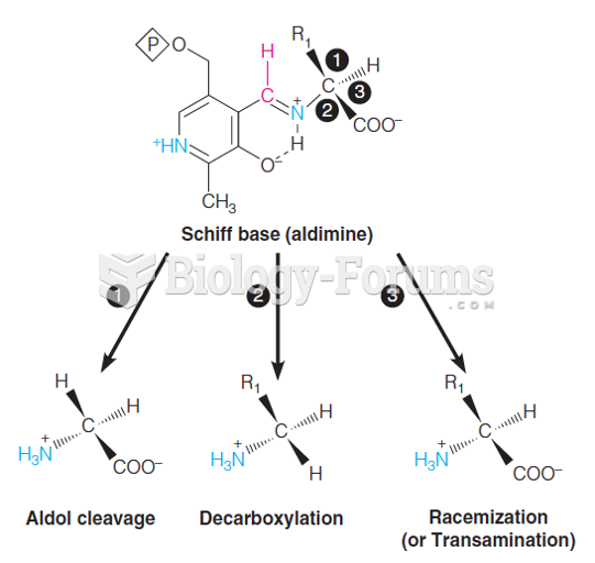 Versatility of the pyridoxal phosphate Schiff base (aldimine) in amino acid reactions