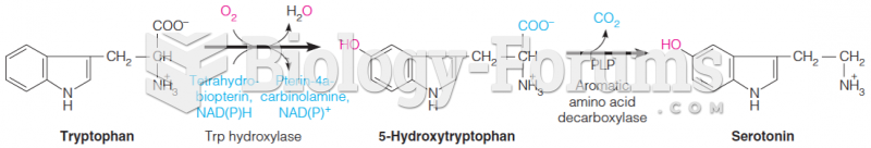 The reaction of a PLP-dependent decarboxylation to yield serotonin