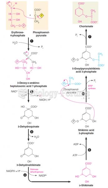 Details of the shikimic acid pathway, I
