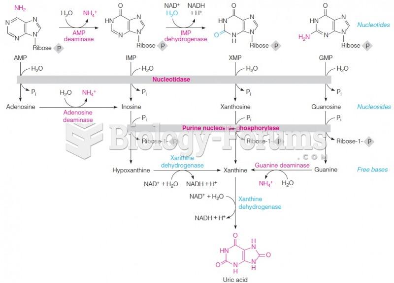 Catabolism of purinenucleotides to uric acid