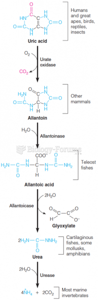 Catabolism of uric acid to ammonia and CO2
