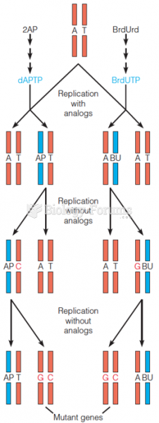 Mechanisms of mutagenesis by nucleotide analogs