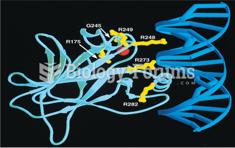 Structure of the p53–DNA complex