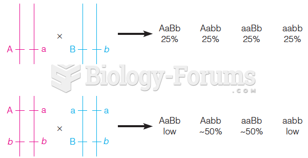 Segregation of two genetic markers, lying on separate chromosomes (top) or on the same chromosome