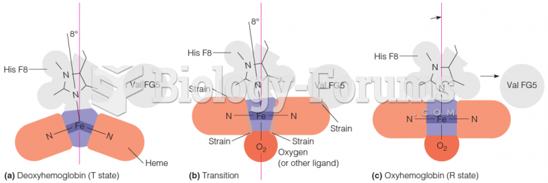 """The essential features of the """"Perutz mechanism"""" of the T-R transition in hemoglobin"""