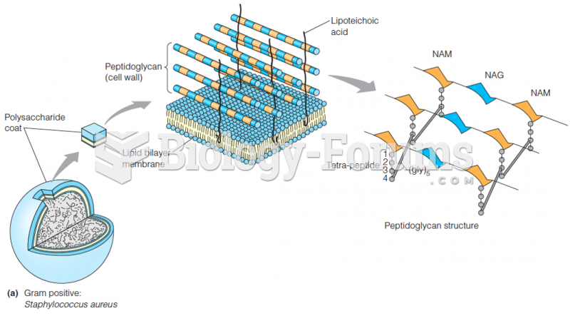 The cell wall of a Gram-positive bacterium, S. aureus