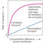 The rate of facilitated diffusion