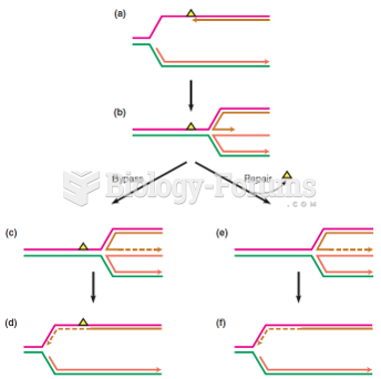 Replication fork regression as a likely response to a blocking DNA lesion