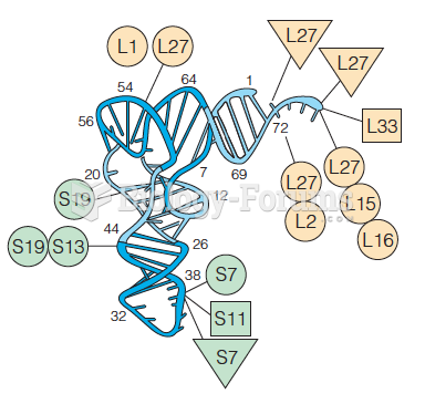 Environment of tRNAs at the ribosome as determined by cross-linking