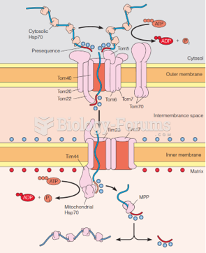 Transport of newly synthesized mitochondrial proteins into the matrix