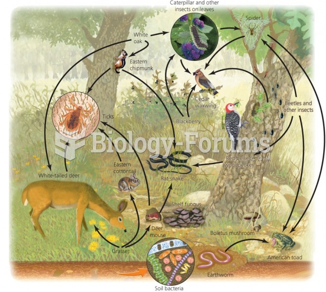 Food webs show feeding relationships and energy flow