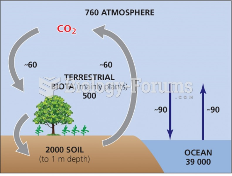Soil and the terrestrial reservoir for carbon