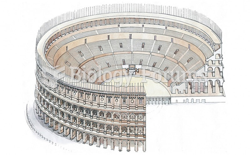 Reconstruction Drawing of The Flavian Amphitheater (Colosseum)