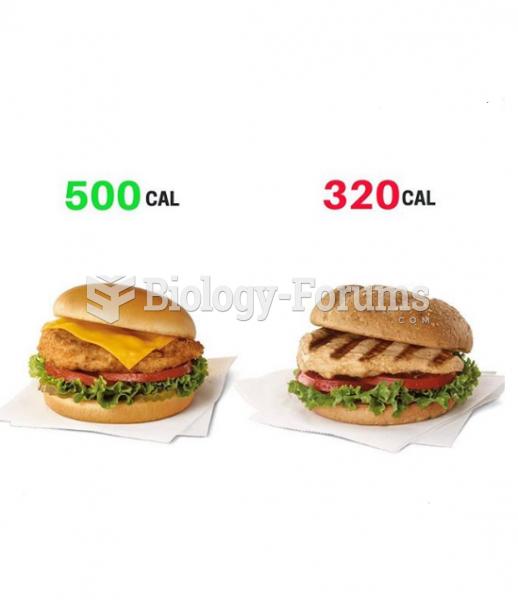 Fried Chicken Burger vs Grilled Chicken Burger
