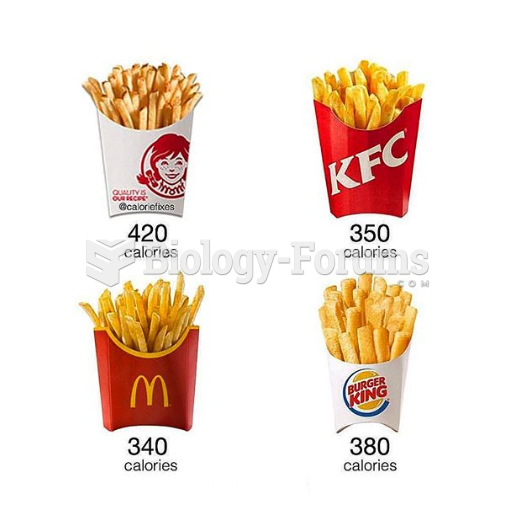 Which Medium FRIES would you eat?
