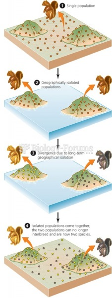 Speciation produces new types of organisms