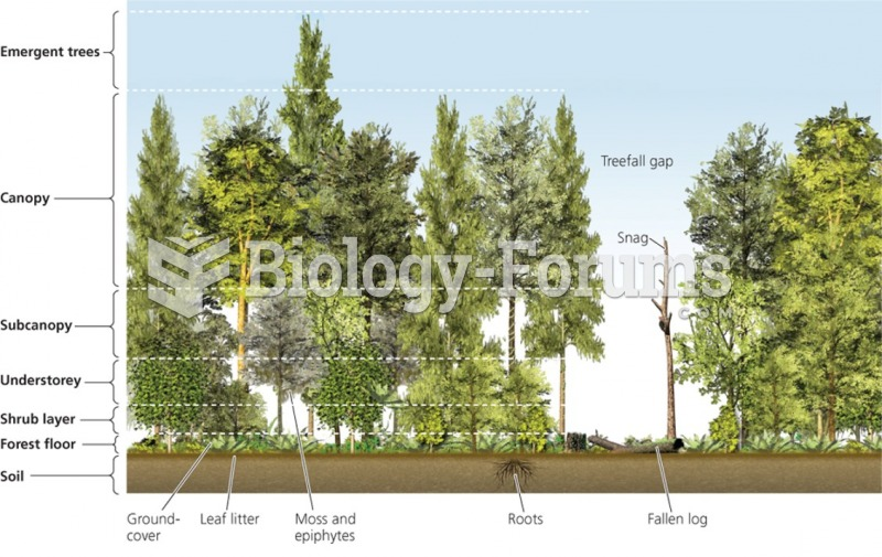 Major groups of forest biomes