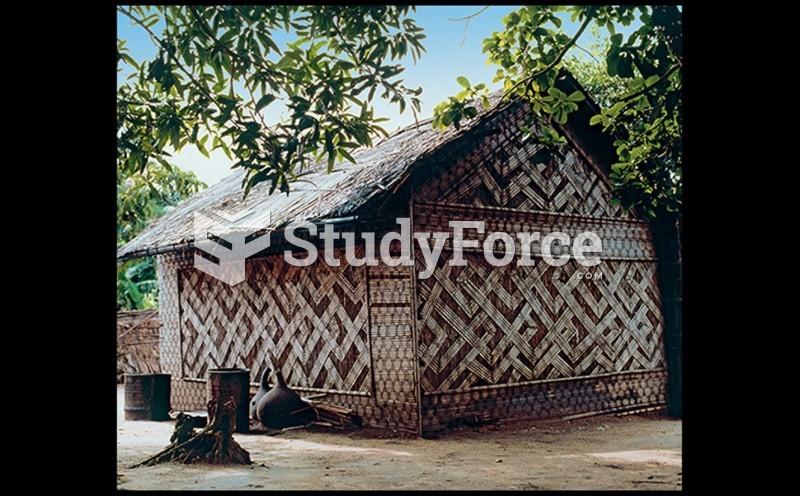 Sleeping House of the Nyim