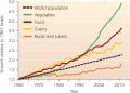 Food security per person