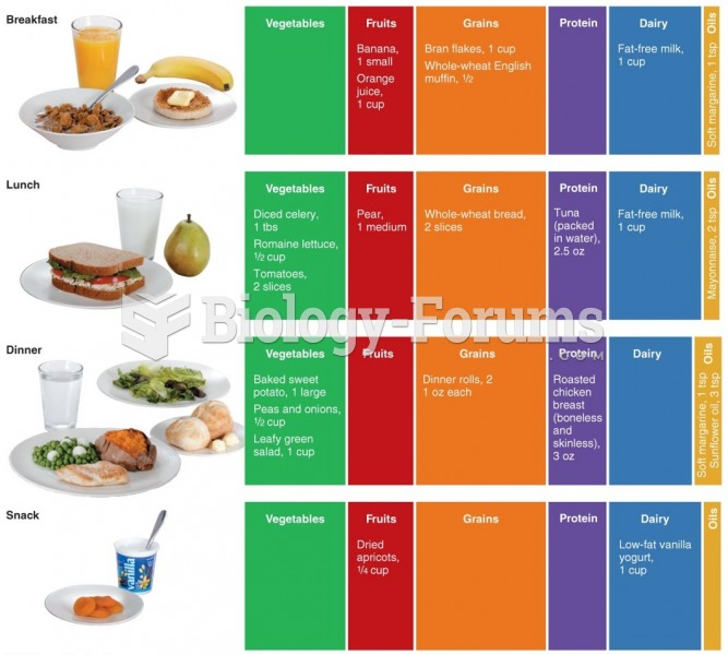 A Healthy Daily Food Plan A variety of foods from each group creates a well-balanced diet
