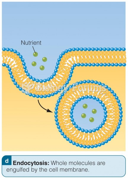 Endocytosis: Absorption Methods in the Small Intestine