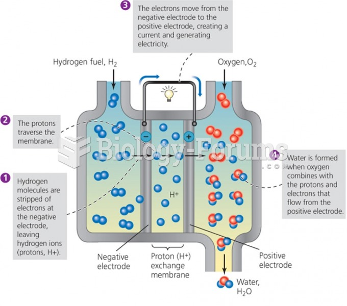 A typical hydrogen fuel cell