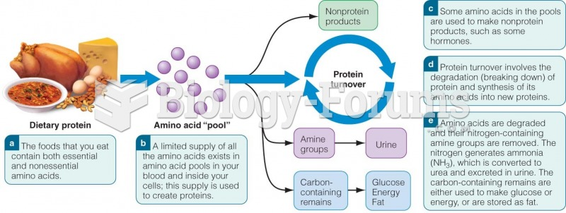 The Fate of Amino Acids in Your Body
