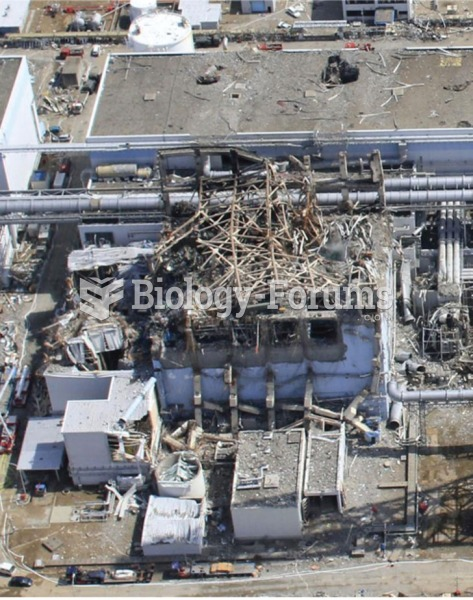 The Fukushima Daiichi power plant