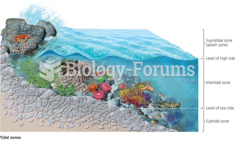 A typical intertidal zone