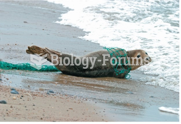 Marine pollution threatens resources and marine life