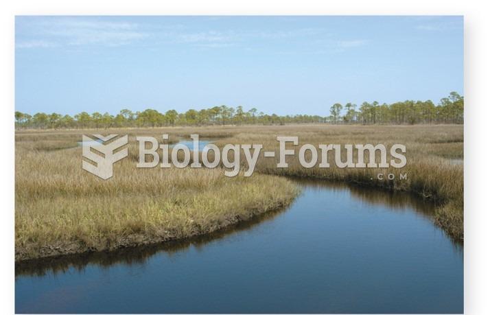 Rapid advance of shoreline and Flooding of coastal ecosystem