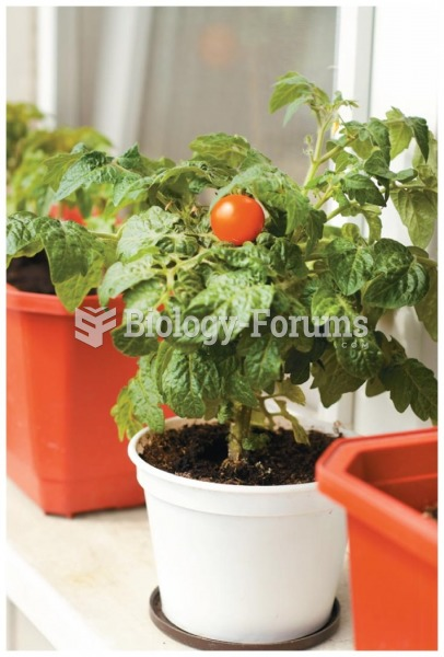 Growing plants in a container garden can provide healthy, nutritious vegetables for your dinner