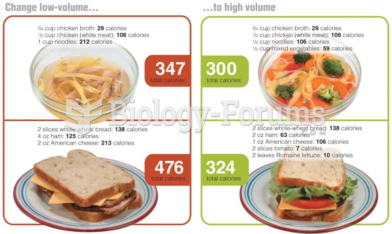 Adding Volume to Your Meals Aids Weight Loss