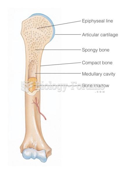 Composition of a long bone